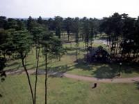 下田公園キャンプ場・写真
