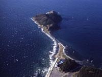 夏泊半島・写真