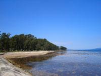 椿山海岸・写真