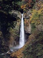 根尾の滝・写真
