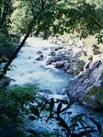 清流馬瀬川・写真
