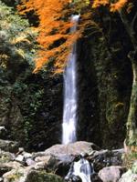 養老の滝・写真