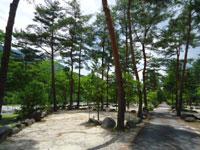 塔の岩オートキャンプ場・写真
