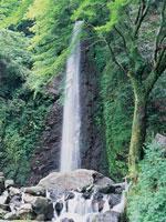 養老の滝・菊水泉・写真