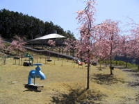 智者の丘公園・写真