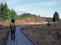 小田貫湿原・写真