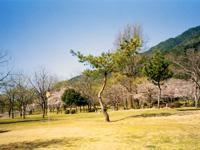 上島キャンプ場・写真