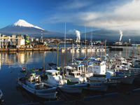 田子の浦港