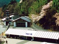 道の駅 奥大井音戯の郷・写真