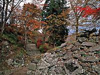 猪苗代城跡(亀ヶ城公園)・写真