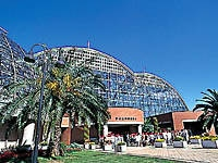夢の島熱帯植物館・写真