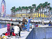 和歌山マリーナシティ 海釣り公園・写真