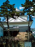 岡崎城(竜城)