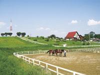 愛知牧場・写真