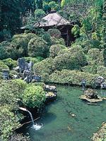 瑞竜山法雲寺(札所30番)・写真