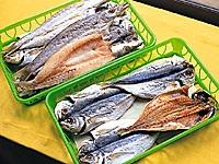 干物専門店 魚判・写真