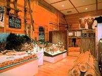真室川町立歴史民俗資料館・写真