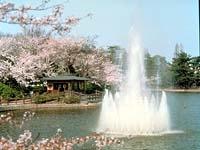 亀城公園・写真