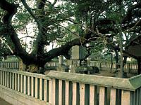 小楠公御墓所・写真
