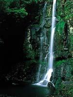 潜竜ヶ滝・写真