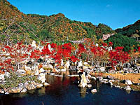 耶馬渓ダム記念公園 溪石園・写真