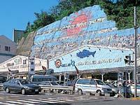 日本海フィッシャーマンズ・ケープ
