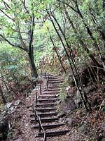 三木里 野鳥の小径・写真