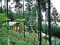 秦皇山森林公園・写真