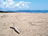 砂浜美術館・写真