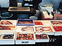 浦安魚市場・写真
