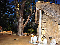新潟県立歴史博物館・写真