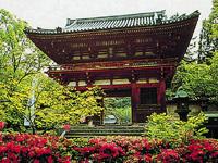 天野山金剛寺・写真