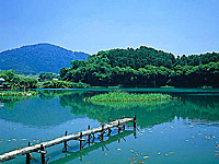 箸墓古墳・写真