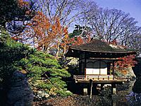 紅葉渓庭園・写真