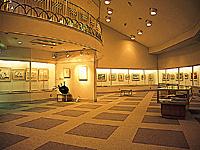 吉備川上ふれあい漫画美術館・写真