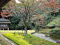 宗隣寺庭園(龍心庭)・写真