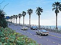 日南海岸ドライブコース・写真