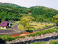 石並川キャンプ場・写真