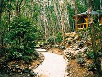 石楠花の森公園・写真