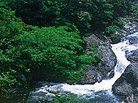 布滝・写真