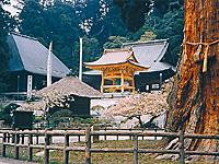 清澄寺・写真