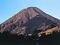 矢倉岳ハイキングコース