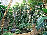 サカタのタネグリーンハウス・写真