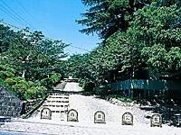 津偕楽公園の桜・写真