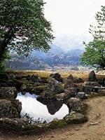 旧秀隣寺庭園・写真