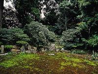 極楽寺庭園・写真