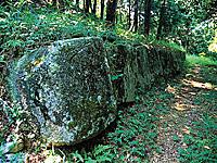 鹿毛馬神籠石・写真