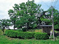 柳川城跡・写真