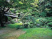 藤江氏魚楽園・写真