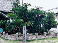 松屋寺・写真